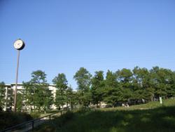 美しが丘公園.jpg